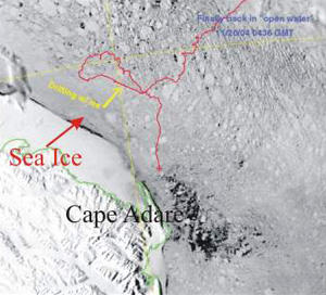 satellite picture of sea ice