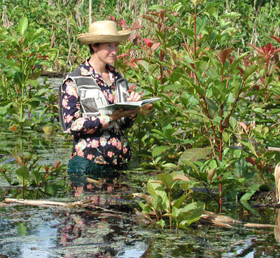 CERC fellow Robin Sears in a flooded forest
