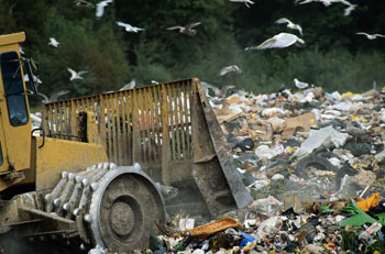 bulldozer and trash