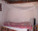 malaria bed net