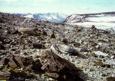 Dry Valleys in Antarctica