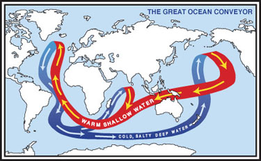 The Great Ocean Conveyor affects climate by transporting heat around the planet.