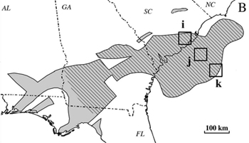The East coast's largest known basalt formation spans South Carolina, Georgia, Alabama and Florida.