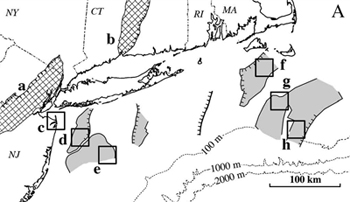 Basalt lies under land (hatched areas) and sea (grey areas) along the Northeast coast. Squares indicate possible targets for exploratory drilling.
