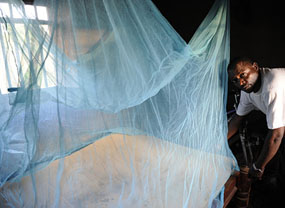 Use of bed nets to protect against malaria is one of a suite of strategies used to improve health and education and foster local development in the Millennium Villages Project sites.