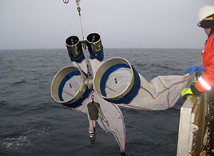 Researchers lower plankton-sampling nets into northern waters.