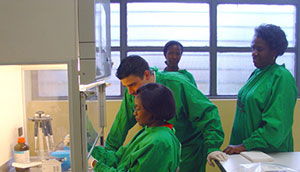 Earth Institute Fellow Yanis Ben Amor trains laboratory technicians in Rwanda how to conduct a Line Probe Assay, a test that detects the presence of the bacteria that causes tuberculosis. Photo: The National Reference Laboratory, Kigali