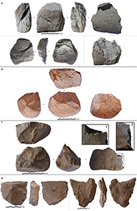 Photos of selected Lomekwi 3 stones accompanying the paper show both cores and flakes knapped from the cores that the authors say illustrate various techniques.