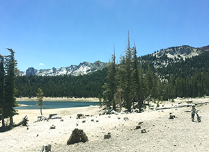 Abnormally low lake level at Horseshoe Lake in the high-elevation Mammoth Lakes Basin of the Sierra Nevada Mountains. Taken June 2015. (Jennifer Bernstein)