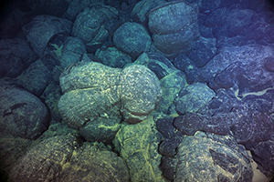 Magma from undersea eruptions congealed into forms known as pillow basalts on the Juan De Fuca Ridge, off the U.S. Pacific Northwest. A new study shows such eruptions wax and wane on regular schedules.