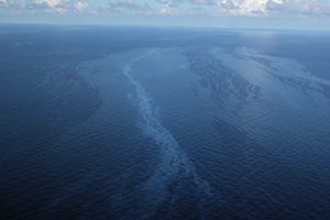 Natural oil slicks as seen from an airplane flying about 1,000 feet above one of the studied regions in the Gulf of Mexico. CREDIT: IAN R. MACDONALD.