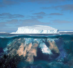 Measurements of ancient coral and polar ice may be key to predicting sea level rise in a warming world.