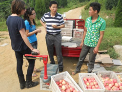 Hope Michelson with apple growers in Shandong Province, China